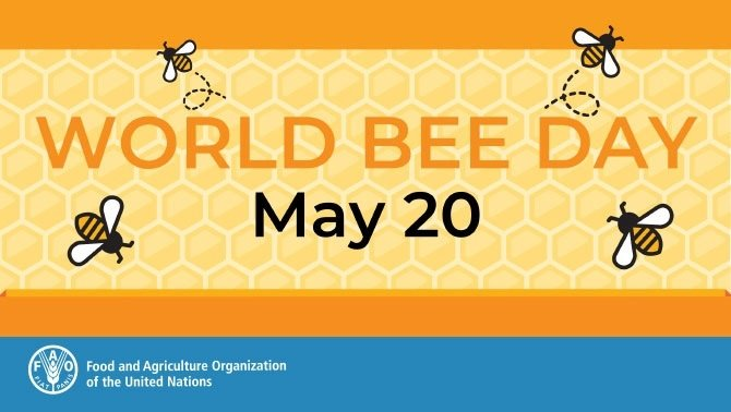 Large 5270 world bee day bee engaged